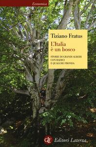 Libro L' Italia è un bosco. Storie di grandi alberi con radici e qualche fronda Tiziano Fratus