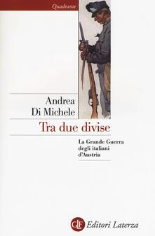 Lpgcsostenible.es Tra due divise. La Grande Guerra degli italiani d'Austria Image