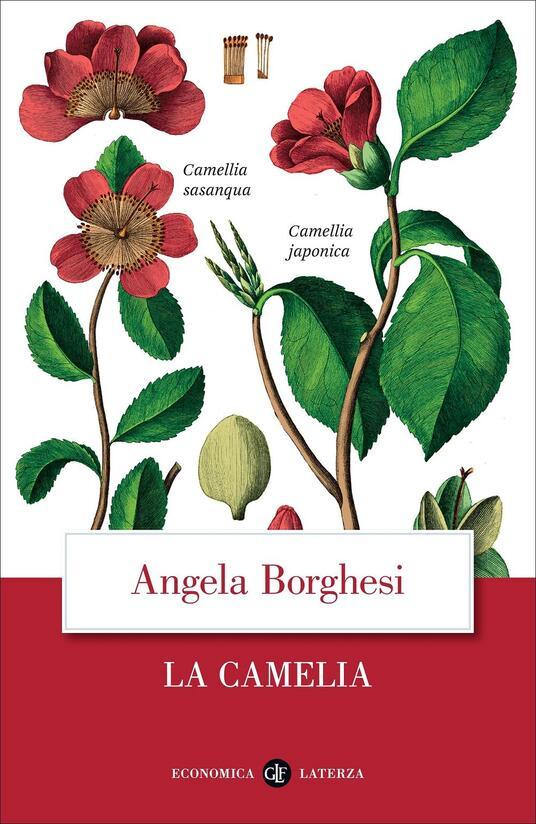 La camelia - Angela Borghesi - copertina