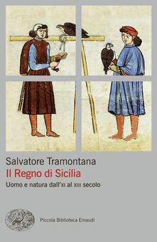 Il regno di Sicilia. Uomo e natura dall'XI al XIII secolo - Salvatore Tramontana - ebook