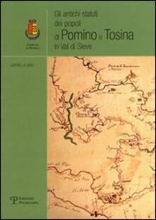 Gli antichi statuti dei popoli di Pomino e Tosina in Val di Sieve - Gabriella Cibei - copertina