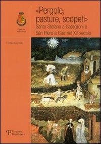 «Pergole, pasture, scopeti». Santo Stefano a Castiglioni e San Piero a Casi nel XV secolo - Ricci Francesco - wuz.it