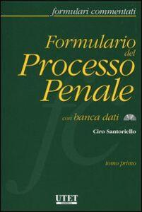 Formulario del processo penale. Con CD-ROM