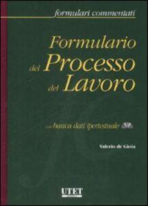 Formulario del processo del lavoro. Con CD-ROM