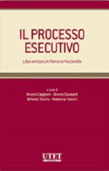Il processo esecutivo.pdf