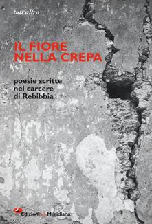 Il fiore nella crepa. Poesie scritte nel carcere di Rebibbia - copertina