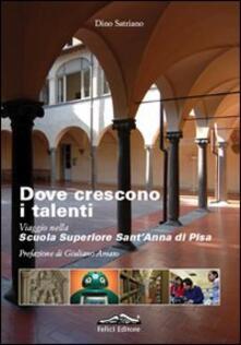 Daddyswing.es Dove crescono i talenti. Viaggio nella scuola superiore Sant'Anna di Pisa Image