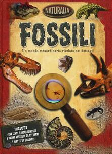 Grandtoureventi.it Fossili Image