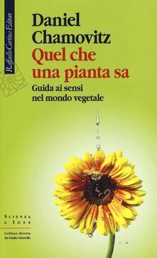Quel che una pianta sa. Guida ai sensi nel mondo vegetale - Daniel Chamovitz - copertina