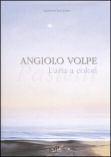Angiolo Volpe. L'aria a colori. Pastelli. Catalogo della mostra (Venezia, 3-25 marzo 2007) - copertina