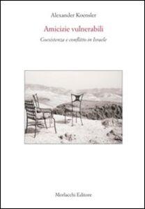 Amicizie vulnerabili. Coesistenza e conflitto in Israele. Con DVD