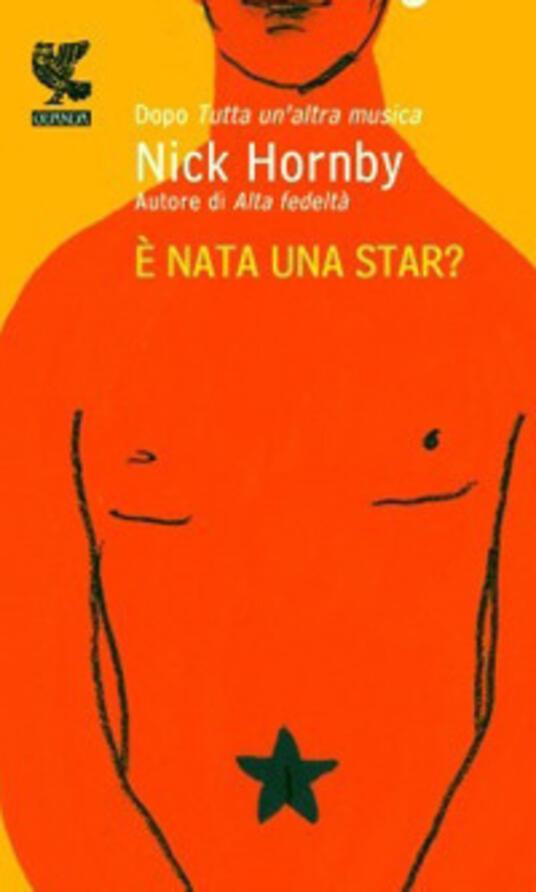 È nata una star? - Nick Hornby - copertina