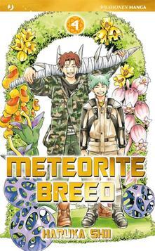 Voluntariadobaleares2014.es Meteorite Breed. Vol. 4 Image