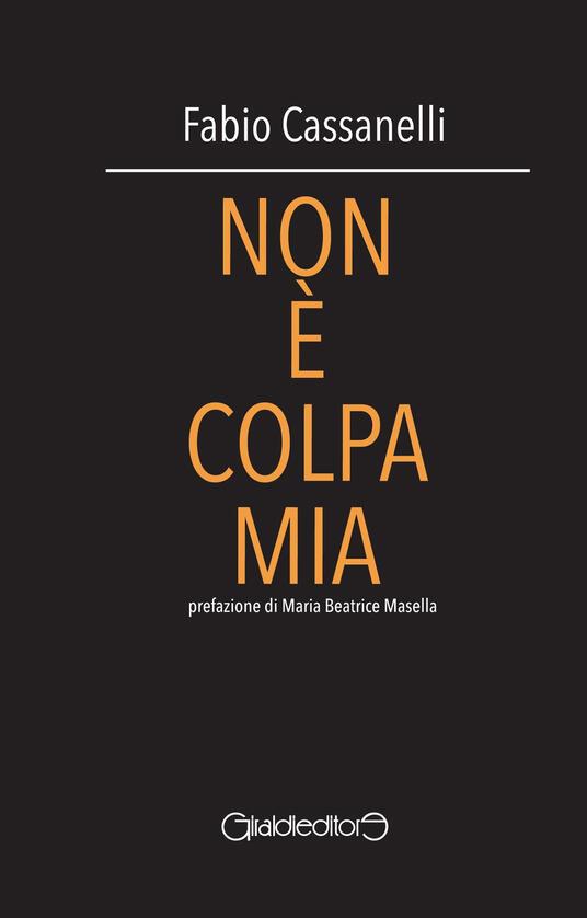 Non è colpa mia - Fabio Cassanelli - copertina