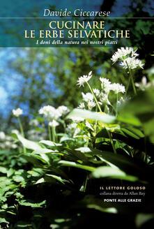 Cucinare le erbe selvatiche. I doni della natura nei nostri piatti - Davide Ciccarese - copertina