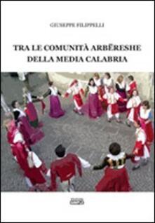 Tra le comunità arberesche della media Calabria - Giuseppe Filippelli - copertina