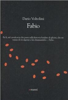 Fabio - Dario Voltolini - copertina