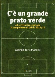 C'è un grande prato verde. 40 scrittori raccontano il campionato di calcio 2011/12 - copertina