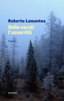 Delle vocali l'azzurrità - Roberto Lamantea - copertina