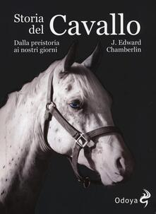 Winniearcher.com Storia del cavallo. Dalla preistoria ai nostri giorni Image