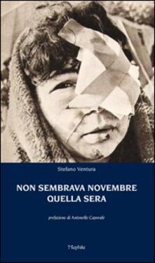 Non sembrava novembre quella sera - Stefano Ventura - copertina