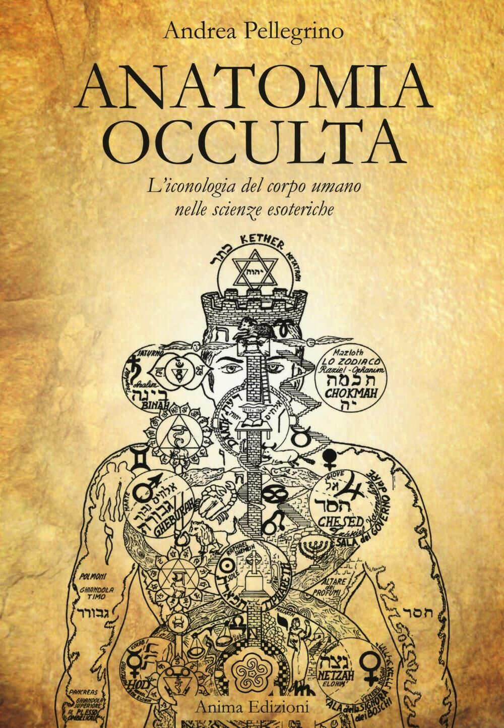 Anatomia occulta. L'iconologia del corpo umano nelle scienze esoteriche