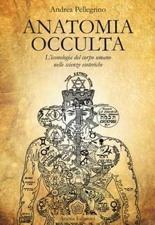 Cefalufilmfestival.it Anatomia occulta. L'iconologia del corpo umano nelle scienze esoteriche Image
