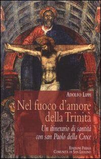 Nel fuoco d'amore della Trinità. Un itinerario di santità con san Paolo della Croce