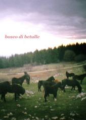 Bosco di betulle. Ediz. italiana e inglese