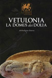 Vetulonia. La Domus dei Dolia. Archeologiae Itinera. Vol. 1