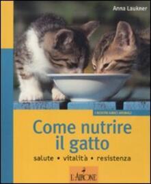 Rallydeicolliscaligeri.it Come nutrire il gatto. Salute. Vitalità. Resistenza Image