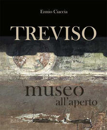 Treviso museo allaperto.pdf