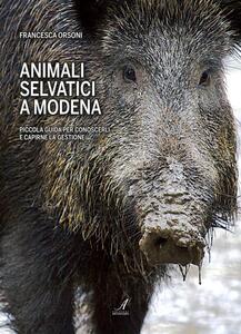 Animali selvatici a Modena. Piccola guida per conoscerli e capirne la gestione