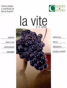 La vite e il vino