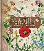 Atlante illustrato delle piante selvatiche e degli infusi curativi