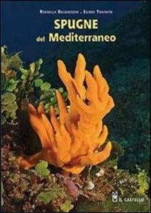 Antondemarirreguera.es Spugne del Mediterraneo Image