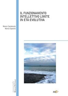 Lpgcsostenible.es Il funzionamento intellettivo limite in età evolutiva Image