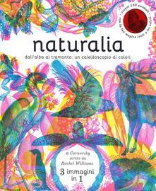 Radiospeed.it Naturalia. Dall'alba al tramonto: un caleidoscopio di colori. Ediz. a colori Image