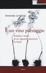 È un vino paesaggio. Pratiche e teorie di un vignaiolo planetario in Friuli