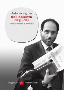 Nel labirinto degli Dei - Antonio Ingroia - ebook