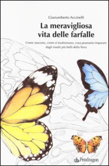 La meravigliosa vita delle farfalle. Come nascono, come si trasformano, cosa possiamo imparare dagli insetti più belli della Terra - Gianumberto Accinelli - copertina