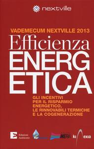 Efficienza energetica. Gli incentivi per il risparmio energetico, le rinnovabili termiche e la cogenerazione. Vademecum Nextville 2013