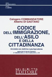 Codice dell'immigrazione, dell'asilo e della cittadinanza. Annotato con dottrina e giurisprudenza