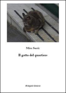 Il gatto del quartiere