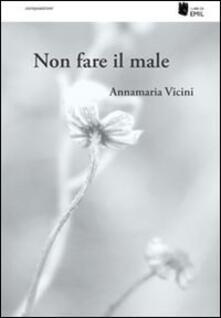 Non fare il male - Annamaria Vicini - copertina