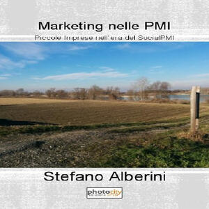Marketing nelle PMI. Piccole imprese nell'era del SocialPMI