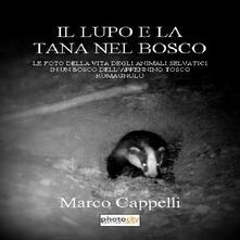 Il lupo e la tana nel bosco. Le foto della vita degli animali selvatici in un bosco dell'Appennino tosco-romagnolo - Marco Cappelli - copertina