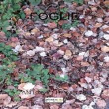 Foglie - Antonio Bonelli - copertina