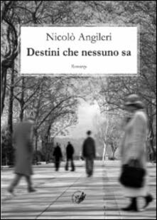 Destini che nessuno sa - Nicolò Angileri - copertina