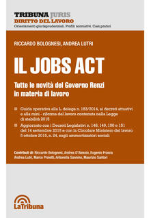 Il jobs act. Tutte le novità del Governo Renzi in materia di lavoro - Riccardo Bolognesi,Andrea Lutri - copertina
